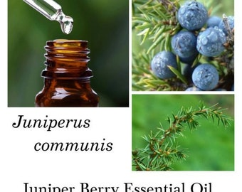 Juniper Berry Essential Oil, Juniper Berry Oil, 100% Pure Authentic Juniper Berry EO
