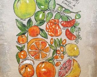 Citrus Shows