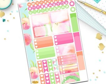 Peachy Keen personal planner sticker kit