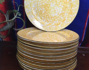 Stangl town &country Dinner Plates/ hand painted plates