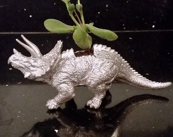 Dinosaur Planter (cactus included)