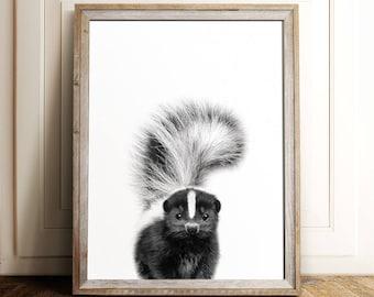 Skunk print, Baby animal prints, PRINTABLE art, Woodland nursery, Nursery decor, Animal art, Nursery wall art, Woodland animals, Photography