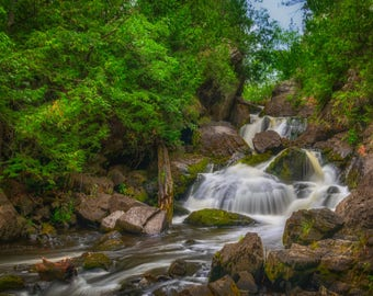 Forest Cascade Photographic Print