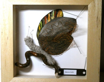 Sculpture of textile art, fake taxidermy, butterfly
