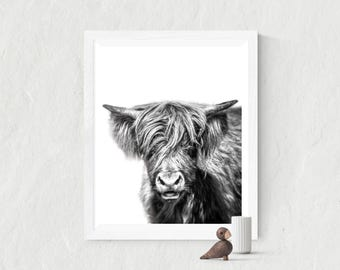Highlands cow |  Highland cow gift, cow print, pet portrait, black white animal print, black and white nursery, printable art, instant