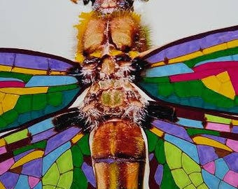 Painted Photograph of Dragonfly