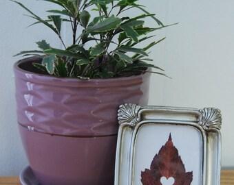 "Mini Leaf Art ""Heart"", Maple Fall Leaves, Framed Wall Decor, Pressed Leaf"