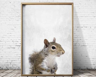 Squirrel Print Cute Animal Nursery Print