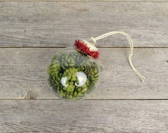 Fancy Craft Beer Ornament with Hops & Red Tinsel Trim / All-Hops Beer Ornament / Beer Stocking Stuffers / Beer Christmas Gifts / Faux Hops