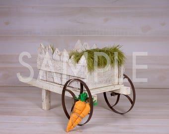 Digital Backdrop/prop newborn -spring wagon on white planks - Easter backdrop - Newborn prop digital backdrop