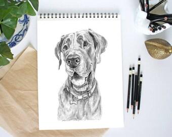 Great Dane Art Print, Dog Portrait, Great Dane Gift, Dog Art, Great Danes, Dog Breed Gifts, Dog Gifts, Dog Portrait, Pet Portrait, Dog Print