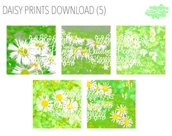 Daisy Prints Download