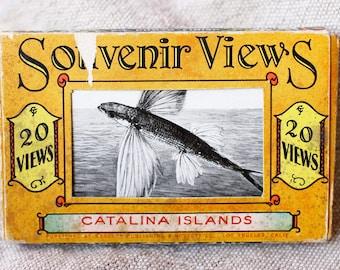 Antique Mini Postcards- Souvenir Views- Catalina Islands