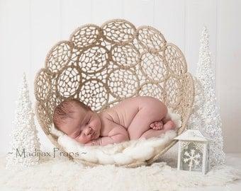 Digital Christmas Backdrop - prop for newborn photography