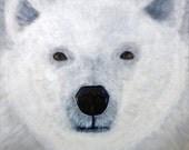 The Polar Bear - Acrylic Painting