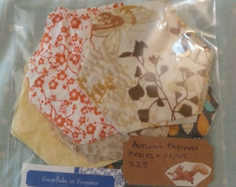 25 autumn themed  Large epp hexies &papers x 25