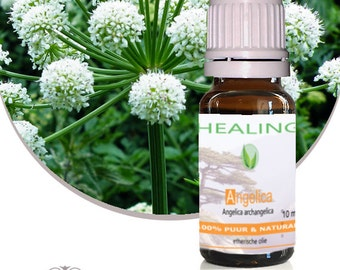 Angelica essential oil-10 ml