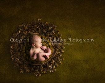 Newborn Digital backdrop / background / Antler bowl