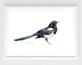 "Original painting,watercolor bird, black-billed magpie, 7""x9""4(18x24cm),home decor"