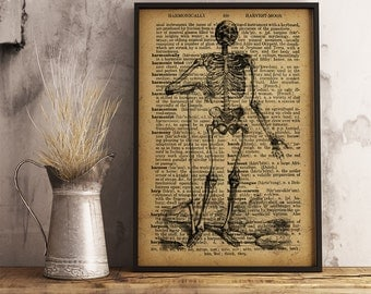 Human Skeleton Print Anatomical Skeleton Art Print Vintage Skeleton Human Anatomy Poster medical print anatomical medical student gift HA17