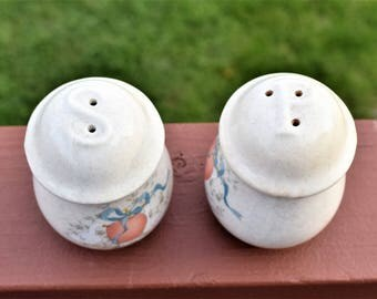Vintage Ceramic Salt and Pepper Shakers/Salt and Pepper shakers