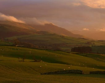 Skiddaw from Aughertree Fell