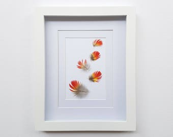 Framed Feathers | Real Feathers | Feather Art | Wall Hanging | Wall Decor | Home Decor | White Shadow Box Frame