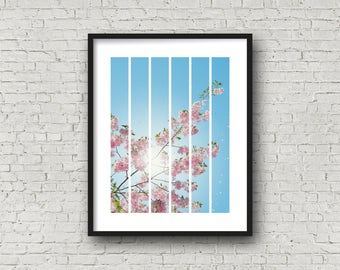 Cherry blossoms, pink flowers, digital prints, instant download, wall art, modern print, abstract print, nature print, nature photography