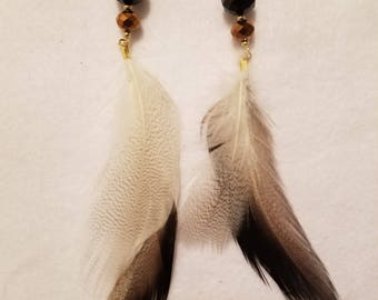 Gold and Black Feather Earrings