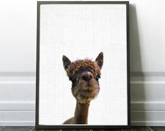 Alpaca, Nursery Decor, printable wall art, Nursery art, Nursery prints, nursery printable, wall art printable, alpaca, nursery printable
