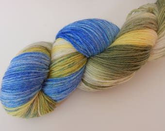Get out of my swamp, Sport Weight Hand Dyed Yarn