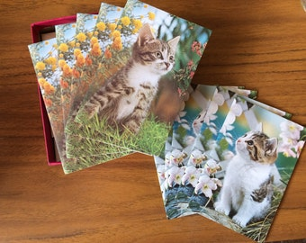 Boxed Set 10 Vintage Brieflets, Note Cards with Envelopes. Cute Kittens, Cats. 'For all occasions and short messages'