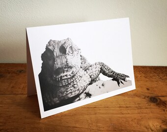 Caiman Greetings Card
