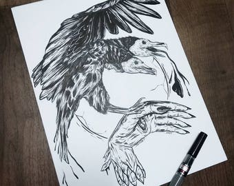Vulture and hand Print