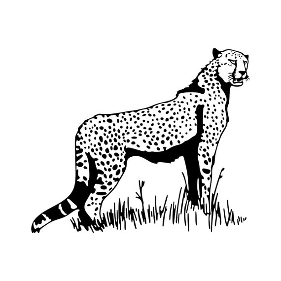 Download Cheetah Leopard graphics design SVG DXF EPS by ...