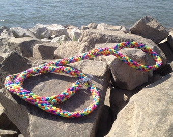 Dog leashes Rainbow