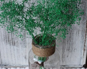Holiday green Dried baby breath, Dried green gypsophila