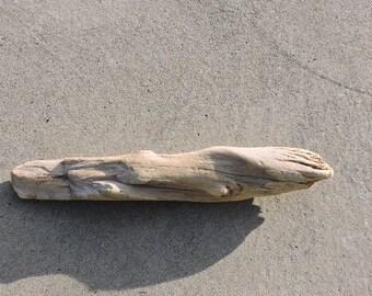 Driftwood Piece ~ Pacific Northwest