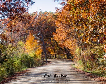 Fall Colors Down a Dirt Road, Fall Photography, Nature Photography, Foliage Photography