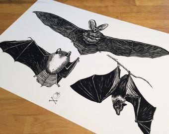 Bats paper Fine Art Poster Print A4 illustration