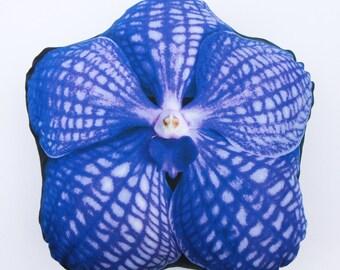 OHANACUSHION Vanda coerulea  ヒスイラン