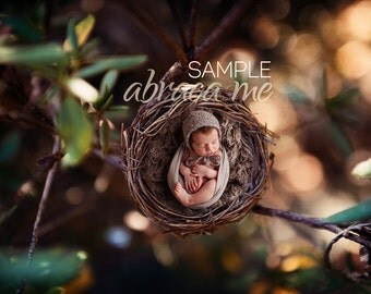 bird nest newborn digital background/ newborn digital backdrop/instant download