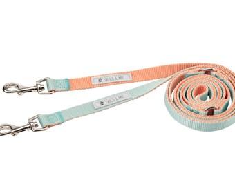 Classic 5 Way Nylon Adjustable Dog / Pet Leash Series (Dual Color -Salmon / Mint)