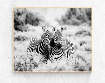 Zebra Photo - Digital Print, Zebra Love Wall Art, Black and White Photography, Wildlife Art, Safari Prints, Nursery Decor, Modern Home