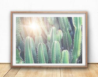 Cactus Wall Art cactus print large cactus wall art digital print pastel