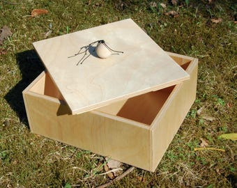 Plywood BOX WITH HANDLE