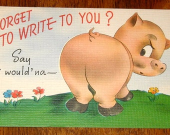Pig postcard vintage original never used cartoon type forget to write vacation travel rare collectible