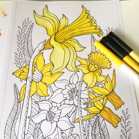 Printable Dainty Daffodils Colouring Page