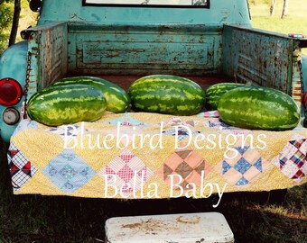60x80 Watermelon Picnic