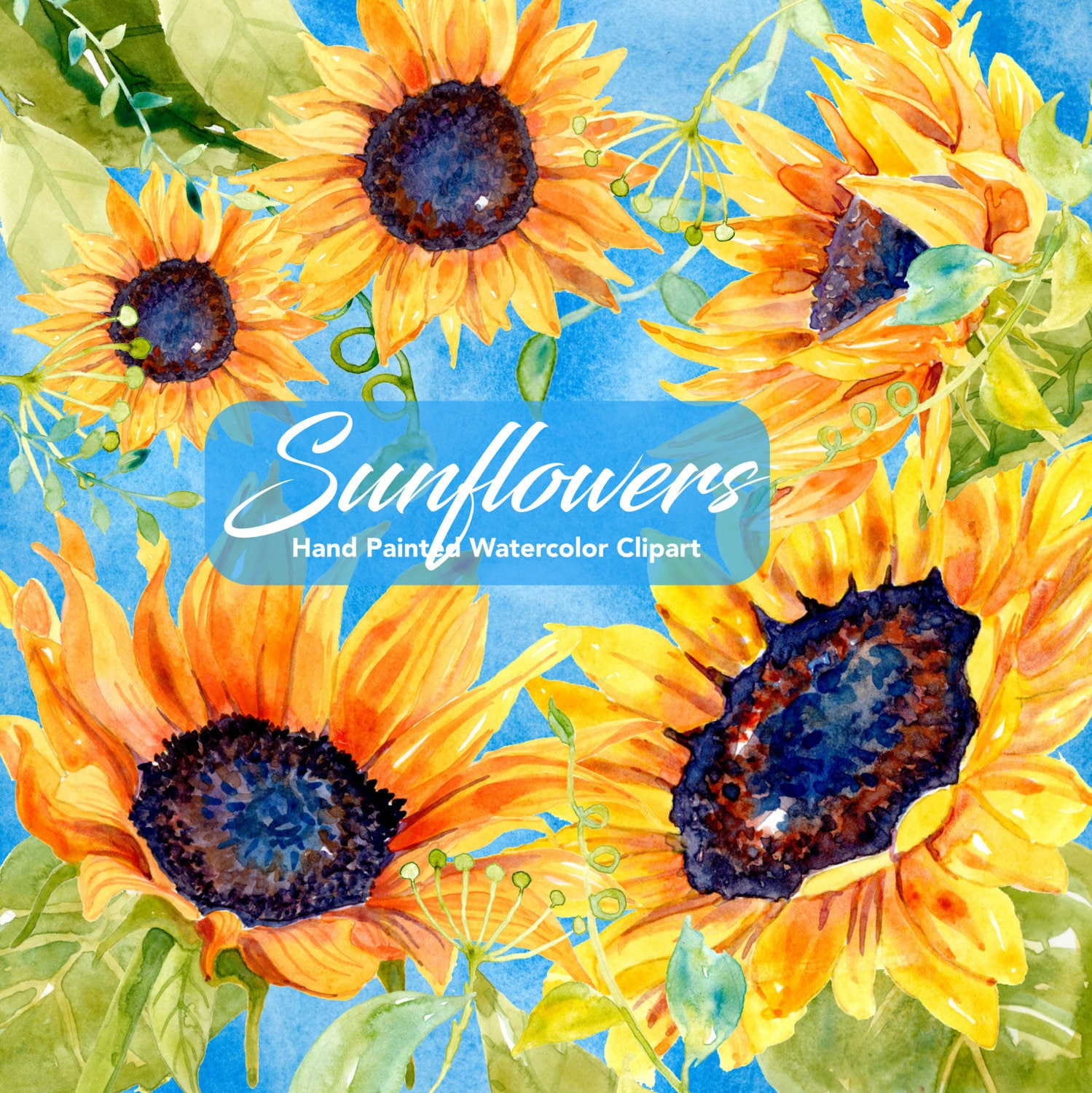 Sunflower Watercolor Clipart | Sunflowers Clipart ...